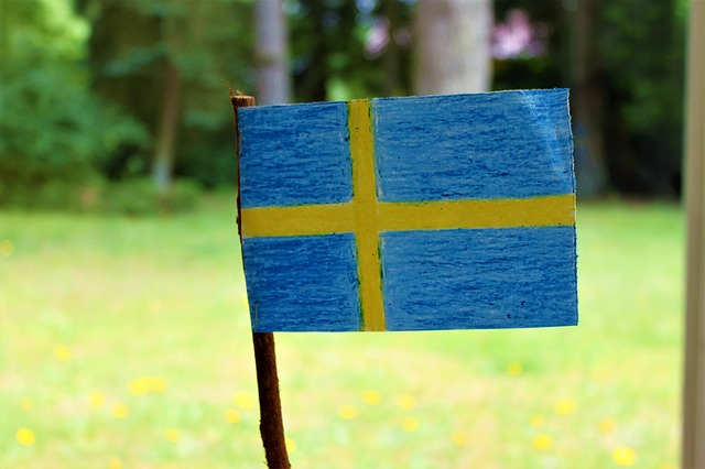 swedish-flag-2432445_640